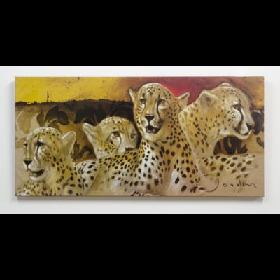Leopárdok